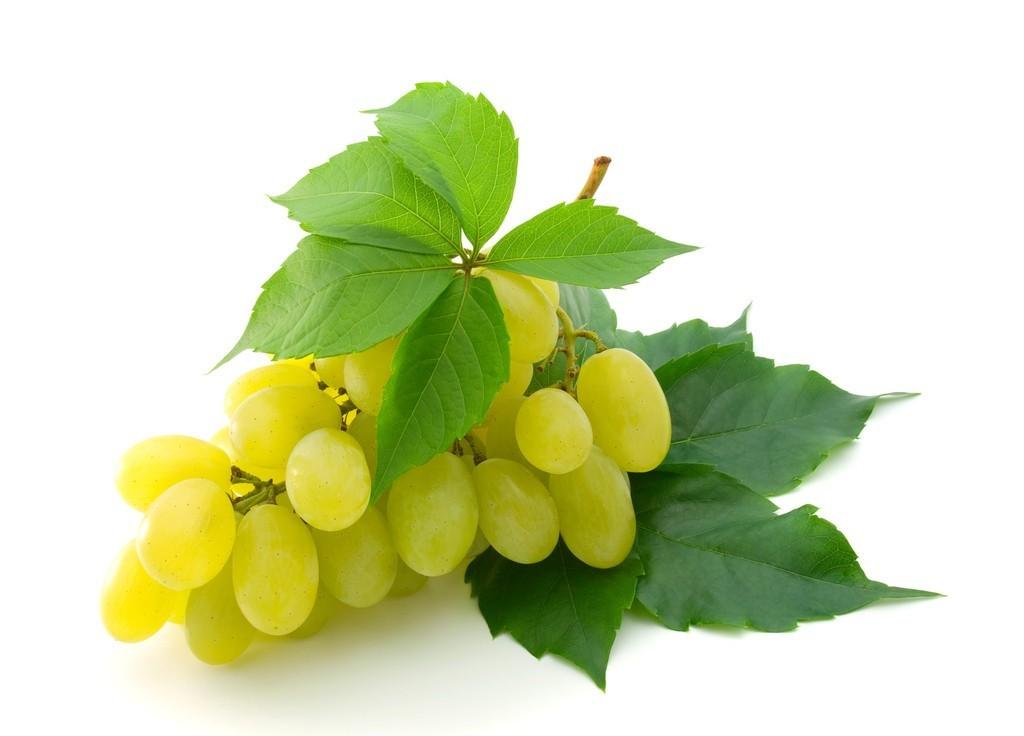<b>葡萄种植科学施肥技术要点</b>