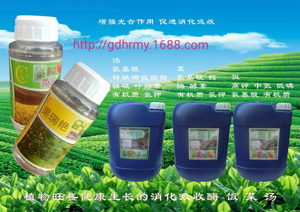 <b>锦瑞丰酶肥抗逆性强年年丰收</b>